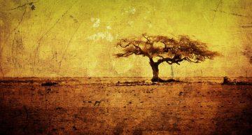 Африка стремится в «атомный клуб»
