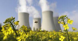 Энергетика будущего зеленеет реакторами на быстрых нейтронах